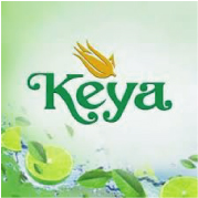Keya Accessories Ltd.