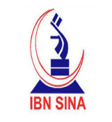 The IBNSINA Pharmaceuticals Industry Ltd.